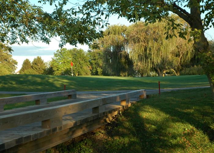 Golf cart path and bridge