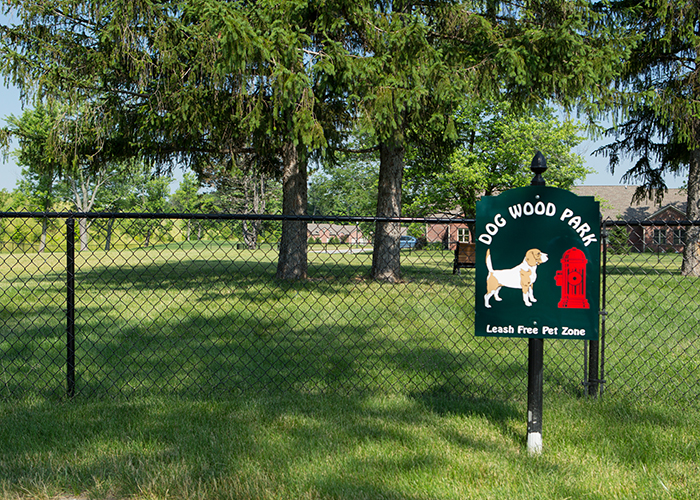 Dog Wood leash-free dog park