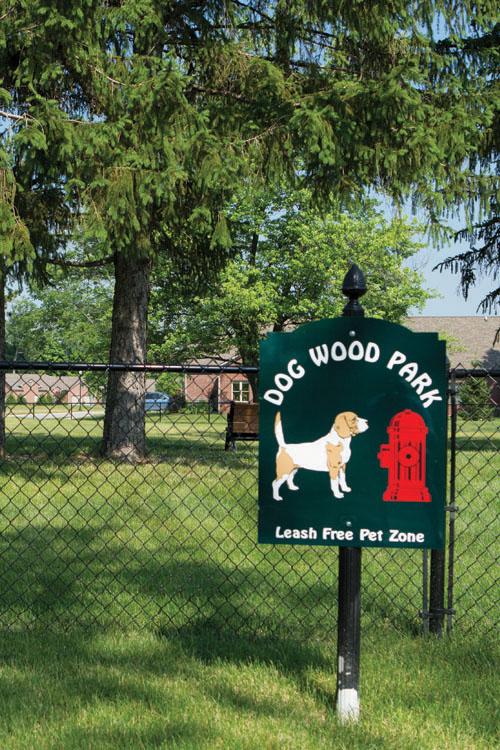 Dog Wood Park